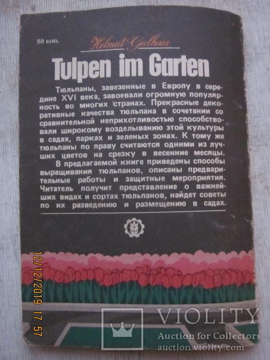 Гладиолусы и тюльпаны., фото №13