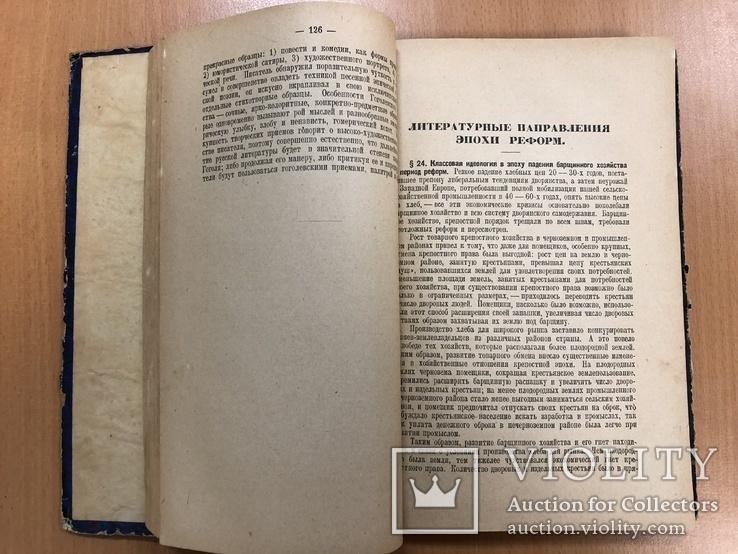 История русской литературы ХІХ века. 1928 год, фото №11