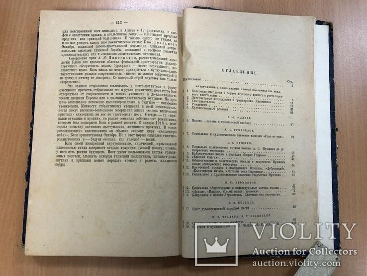 История русской литературы ХІХ века. 1928 год, фото №12