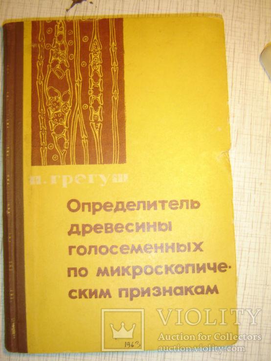 Определитель древесины голосеменных по микроскопическим признакам., фото №2