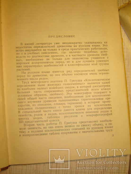 Определитель древесины голосеменных по микроскопическим признакам., фото №3