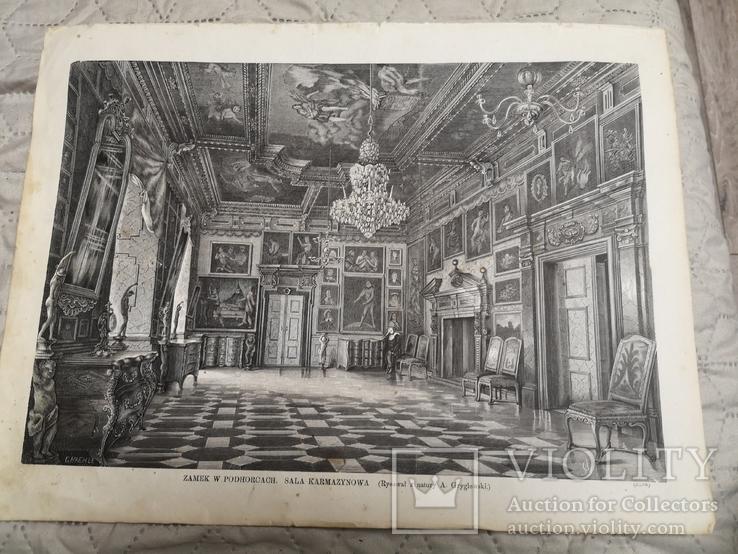 Підгорецький замок 1874
