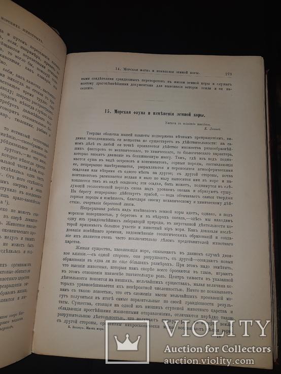 1896 Жизнь моря в 2 томах, фото №4