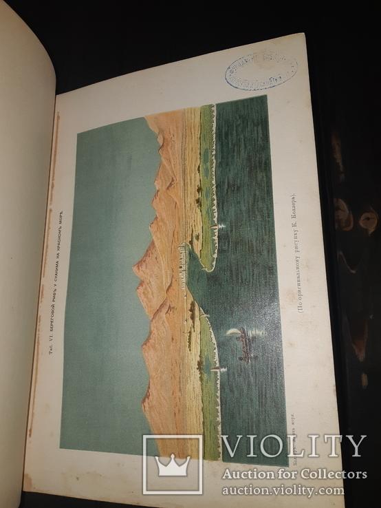 1896 Жизнь моря в 2 томах, фото №7