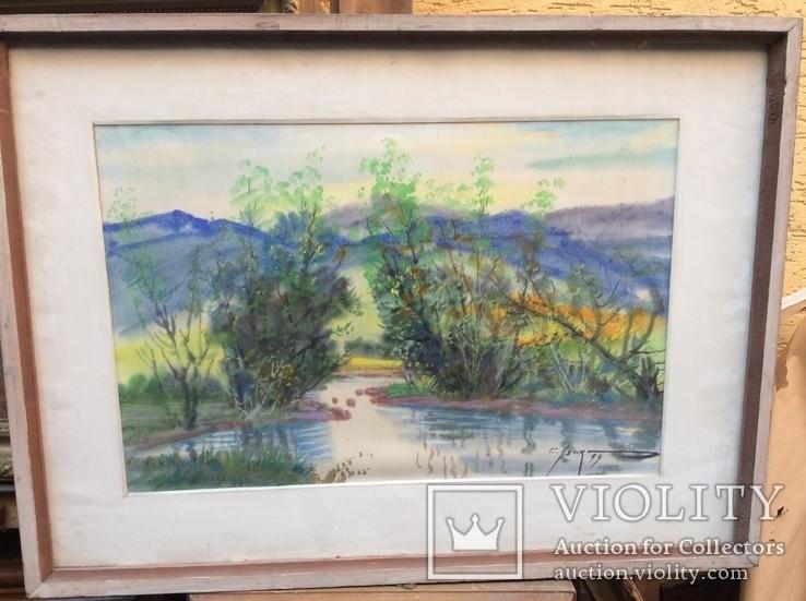 Закарпатский пейзаж.С.Усик, фото №2