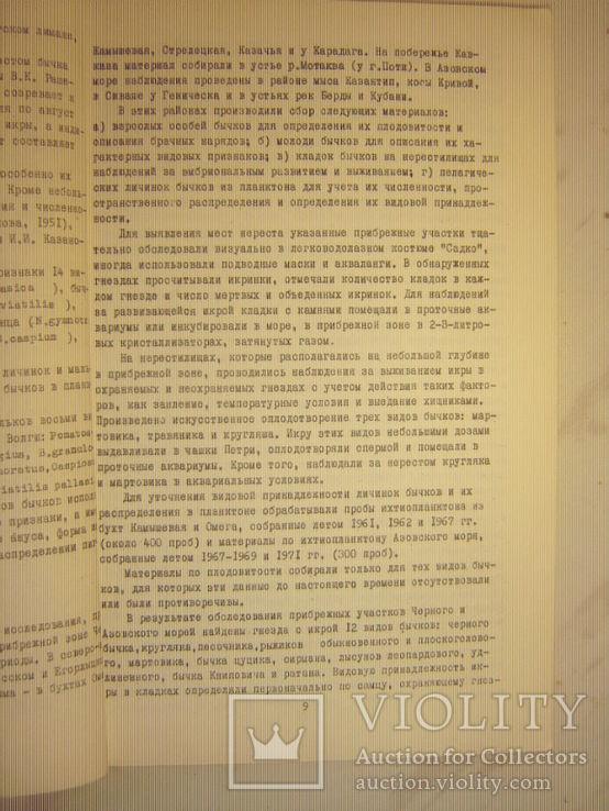 Размножение и развитие азово-черноморских бычков., фото №4