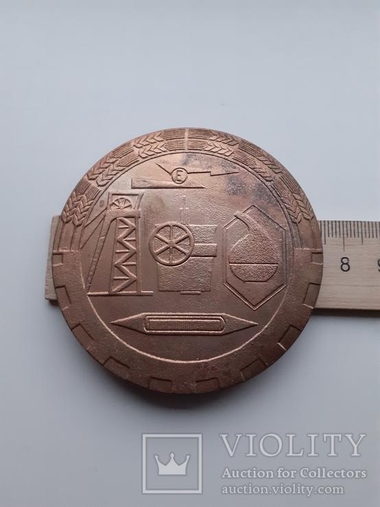 Настольная медаль. Польша., фото №8