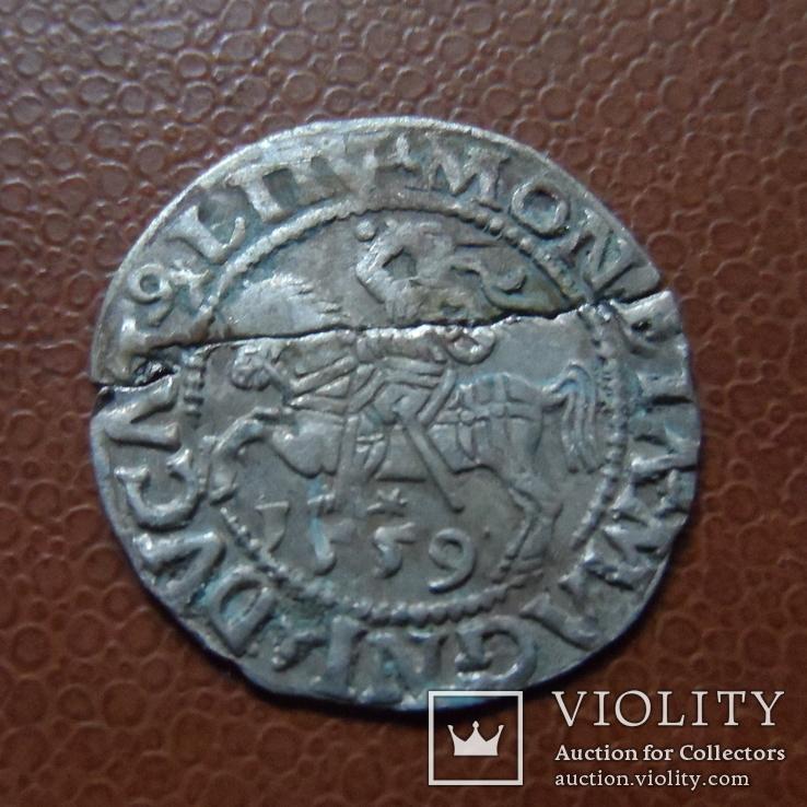 Полугрош 1559  серебро (М.3.44)~, фото №2