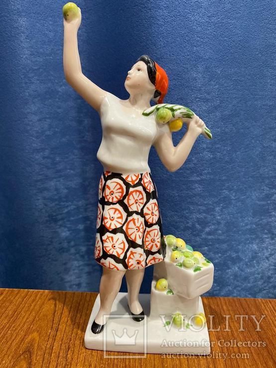 Сборщица яблок