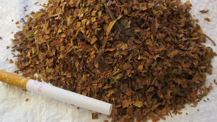 Тютюн, табак Берли + гильзы 500 шт, фото №3