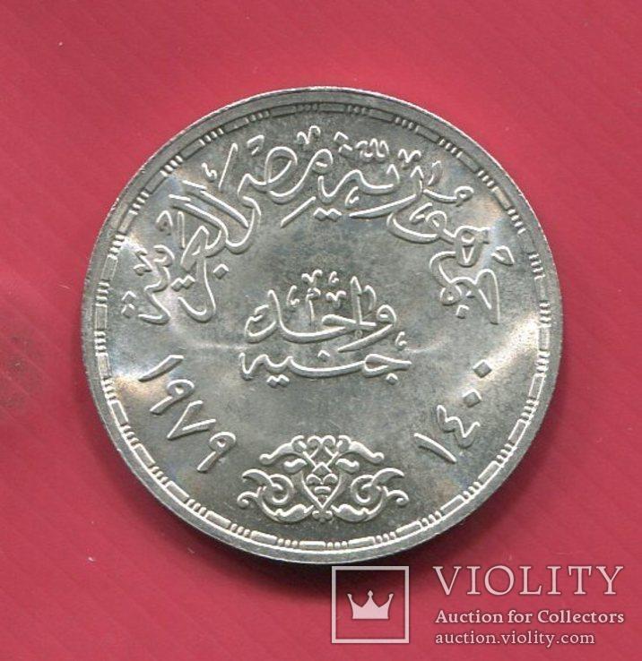 Египет 1 фунт 1979 UNC Птицы (Побег), фото №3