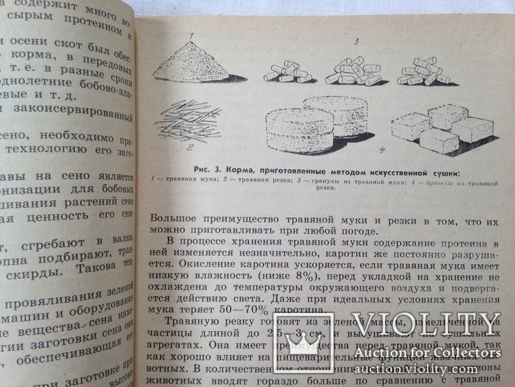 Беседы о животноводстве  Залыгин А.Г.  Просвещение 1986. 126с. ил., фото №7