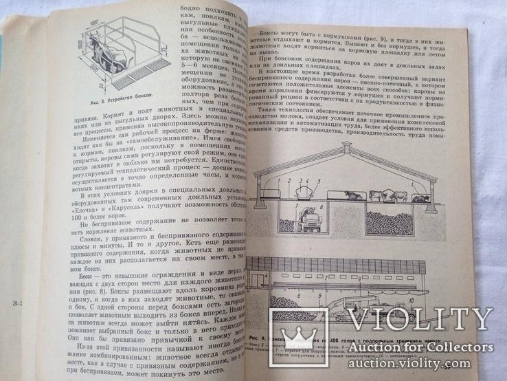 Беседы о животноводстве  Залыгин А.Г.  Просвещение 1986. 126с. ил., фото №8