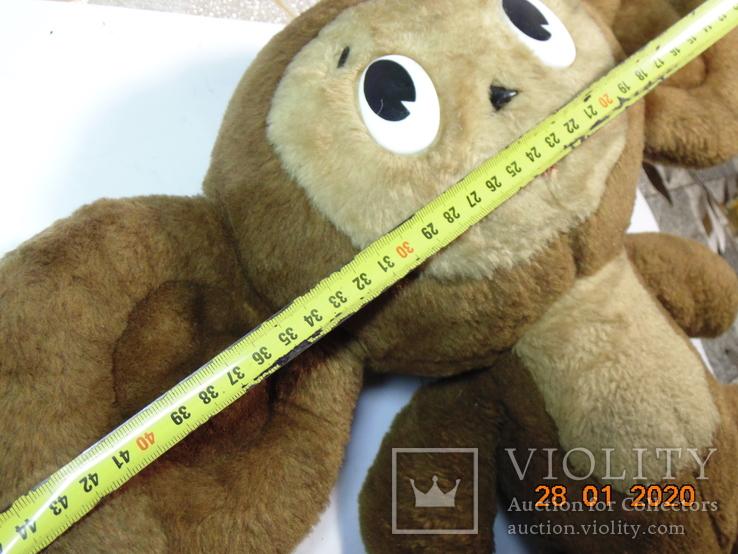 Чебурашка в коллекцию. ссср. 45 х 33 см, фото №12