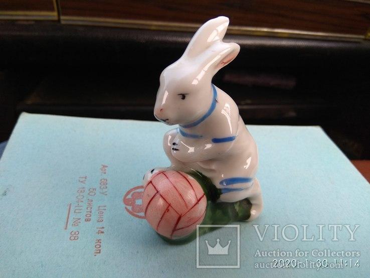 Заяц Футболист., фото №4