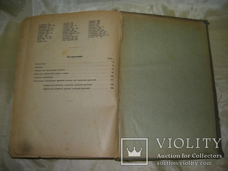 Флора средней России, книга 1933, фото №11