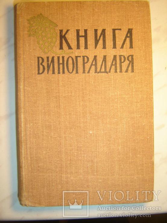 Книга виноградаря. 1959г., фото №2