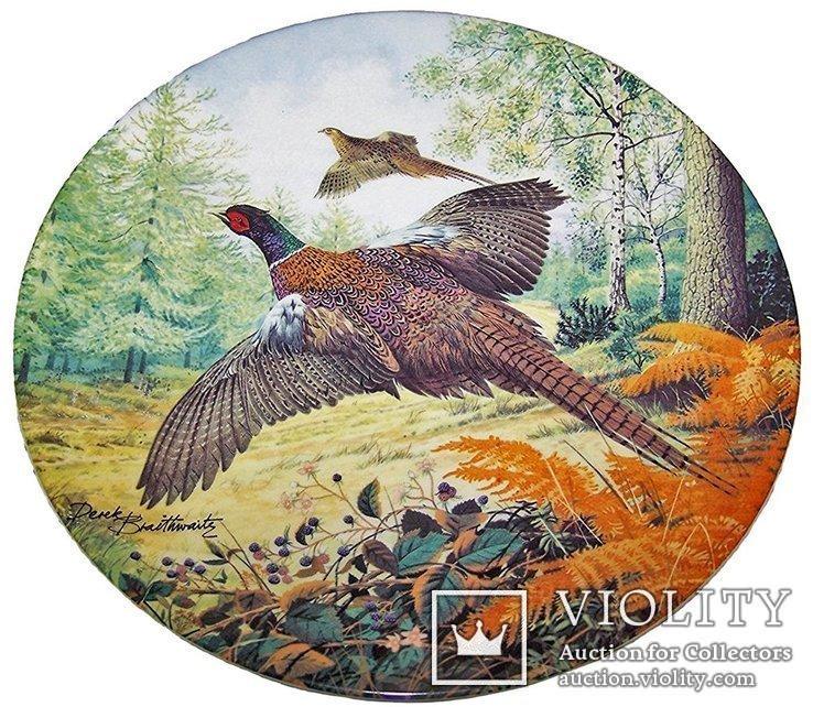 Тарелка коллекционная - Фазаны в полете - Derek Braithwaite Royal Grafton - англия - 1987г