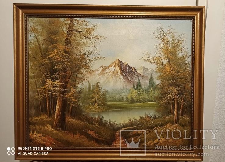 Горный пейзаж 46*56 см. 1930-70хх, фото №2