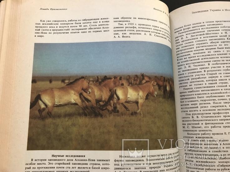 1987 Заповедники Украины и Молдавии, фото №8