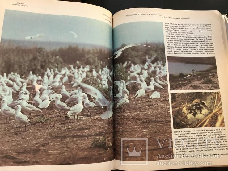 1987 Заповедники Украины и Молдавии, фото №10