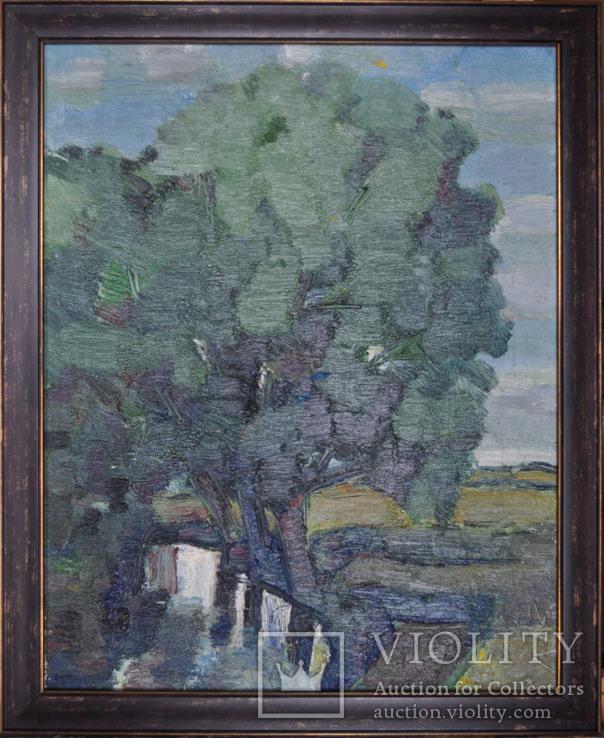 """Лавренко Анатолій  """" Озерце"""" 2007, полотно, олія, 50Х40, фото №2"""