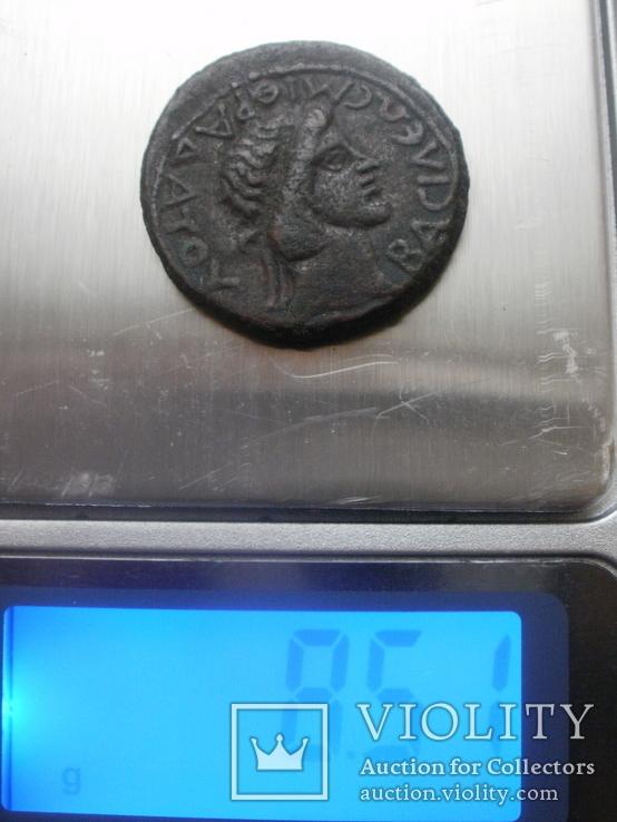 Боспорское ц-во, Ассарий Митридата VIII 39-42 гг.н.э., фото №7