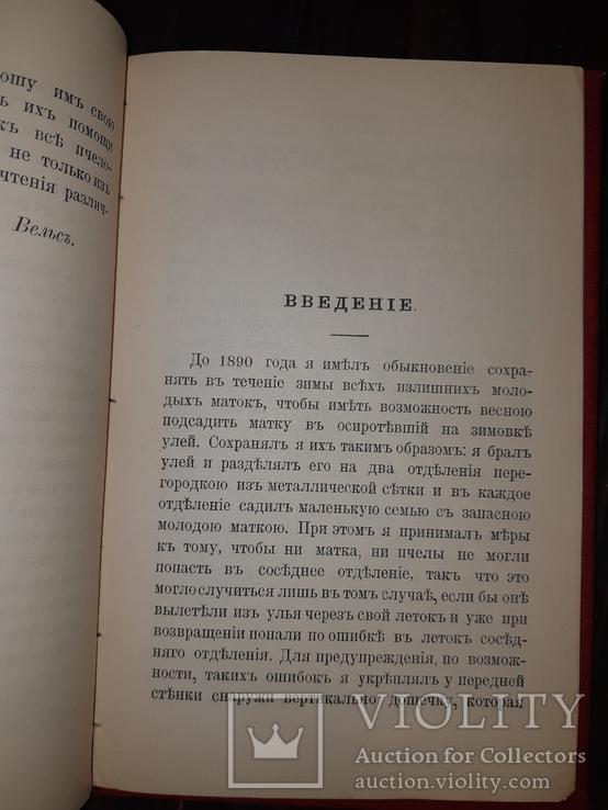 1910 Новая система пчеловодства, фото №6