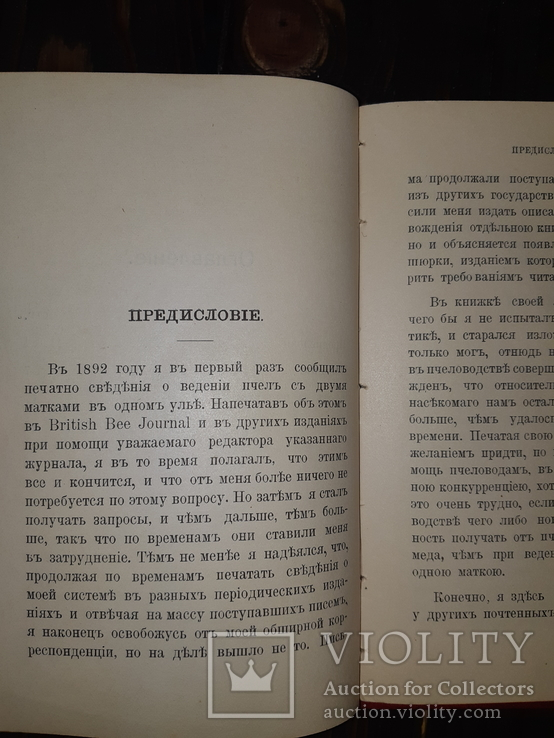 1910 Новая система пчеловодства, фото №7