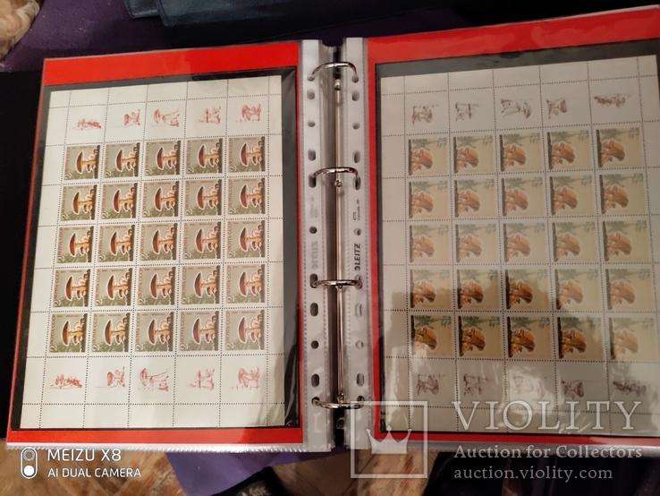5 малых листов серии грибов 1964г марок СССР, фото №2