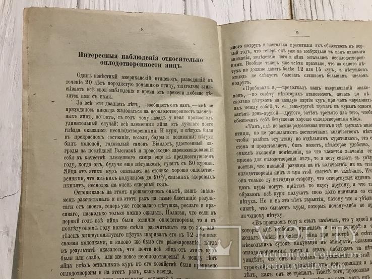 1905 Птицеводство: Инкубация , искусственный вывод цыплят, фото №4