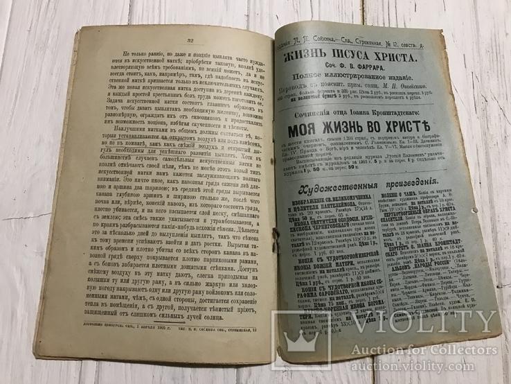 1905 Птицеводство: Инкубация , искусственный вывод цыплят, фото №8