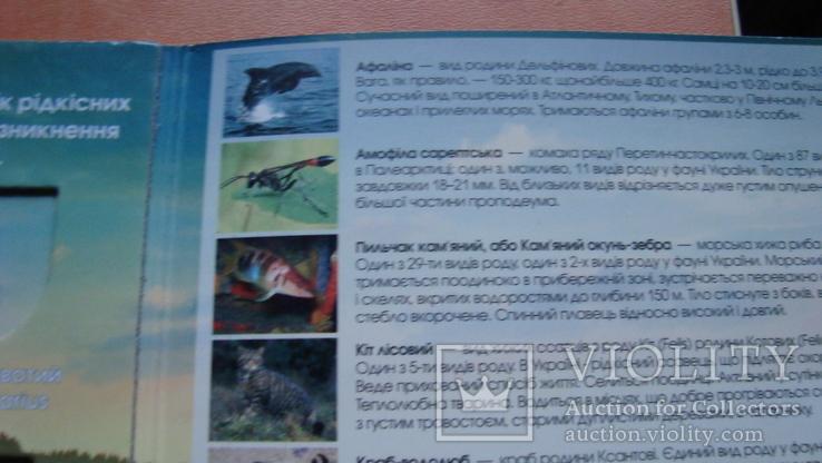 """Альбом """"Червона книга України """" 2020 р, фото №5"""