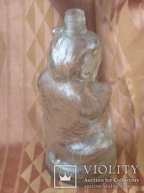 Медведь. Польша 20-30 годов., фото №4