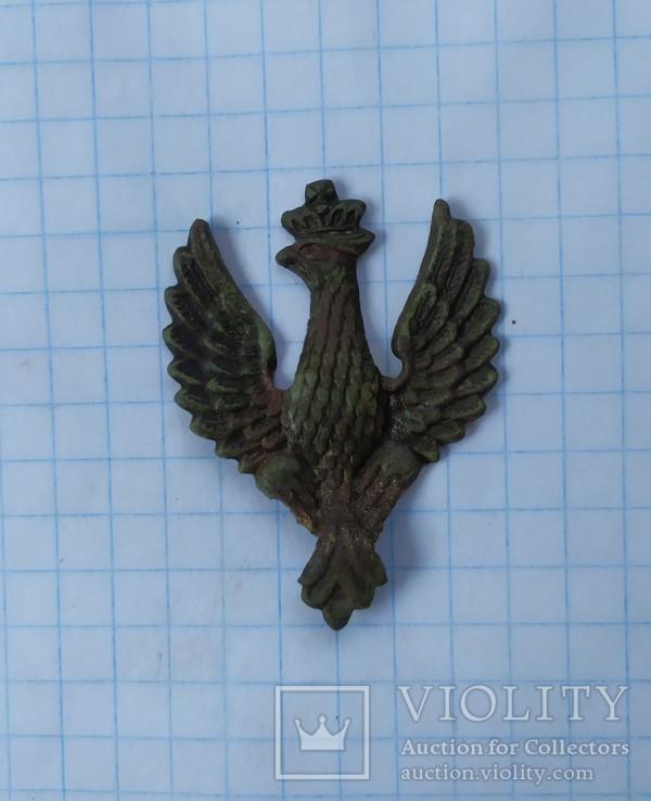 Кокарда Польская