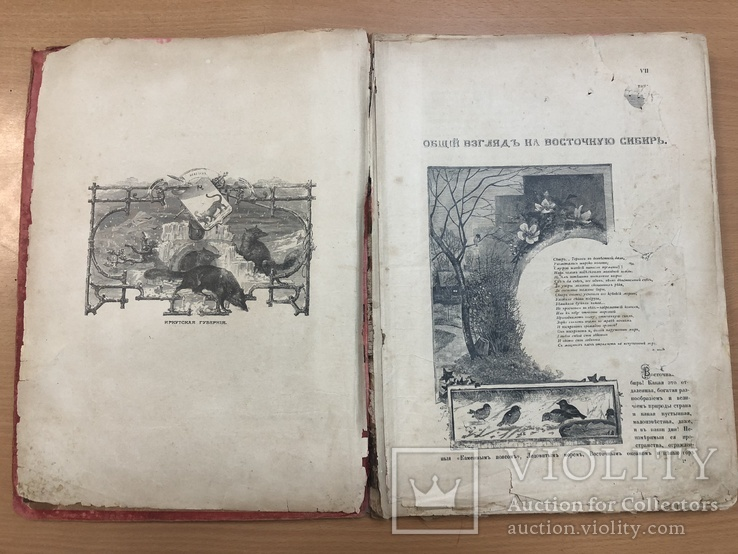 Живописная Россия. 1895 год. Восточные окраины России, фото №9