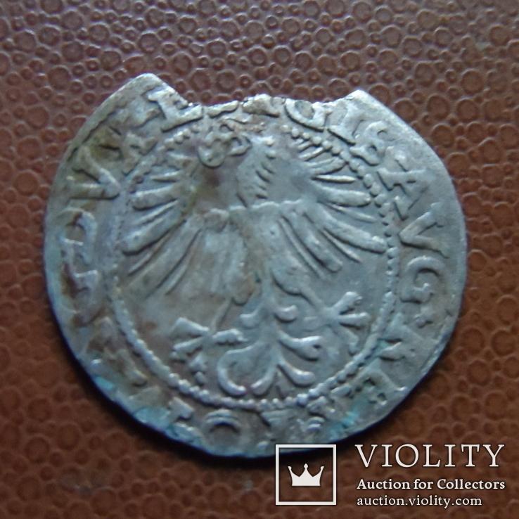 Полугрош  1562   серебро   (М.4.37), фото №5