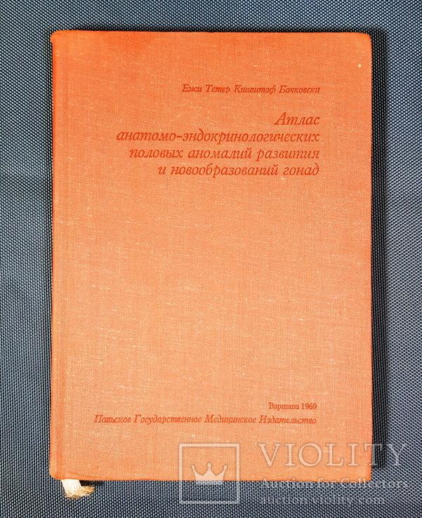 Атлас анатомо-эндокринологических половых аномалий развития, фото №2