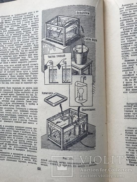 1959 Полезные советы, фото №11