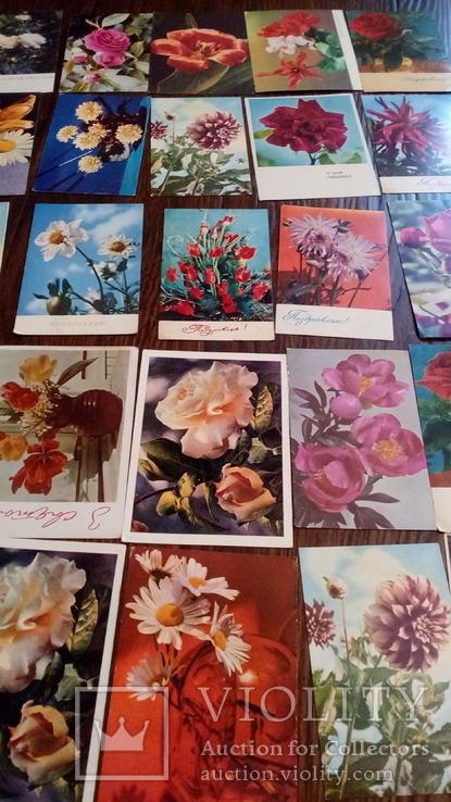 60 старых открыток с цветами + бонус, фото №2