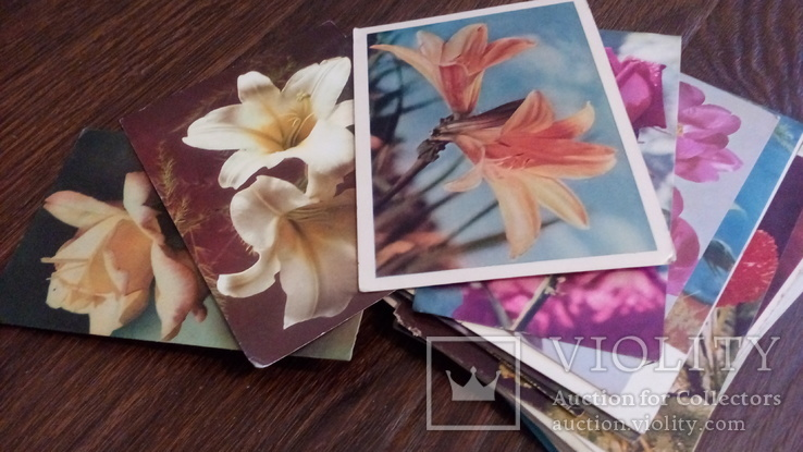 60 старых открыток с цветами + бонус, фото №7