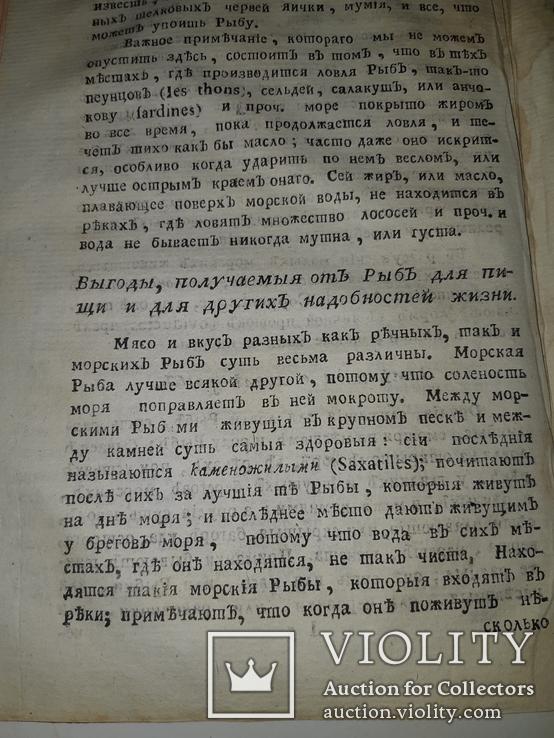 1789 Магазин натуральной истории, фото №4