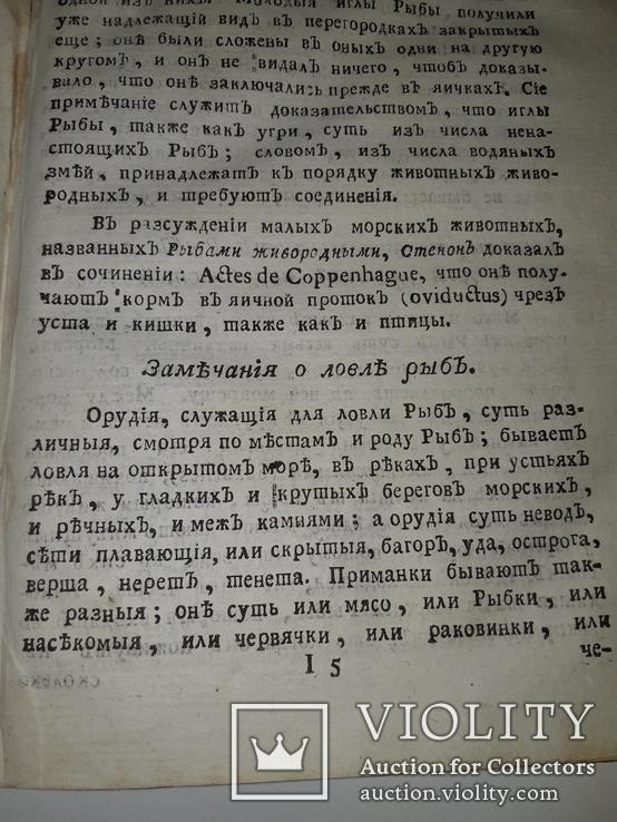 1789 Магазин натуральной истории, фото №5