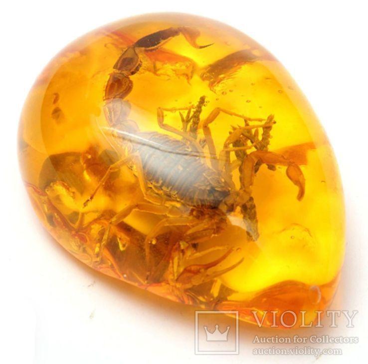 Кулон с скорпионом (имитация янтаря с инклюзом), фото №4