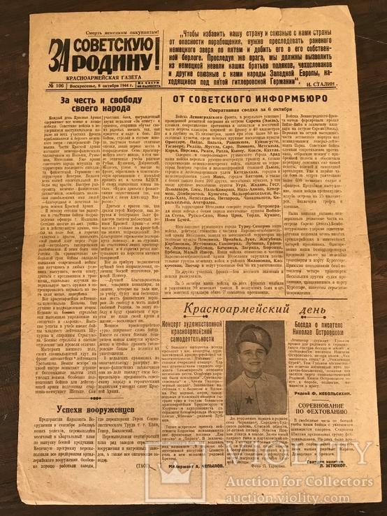 1944 За Советскую Родину. Злодеяния немцев на Украине. Киев, фото №8