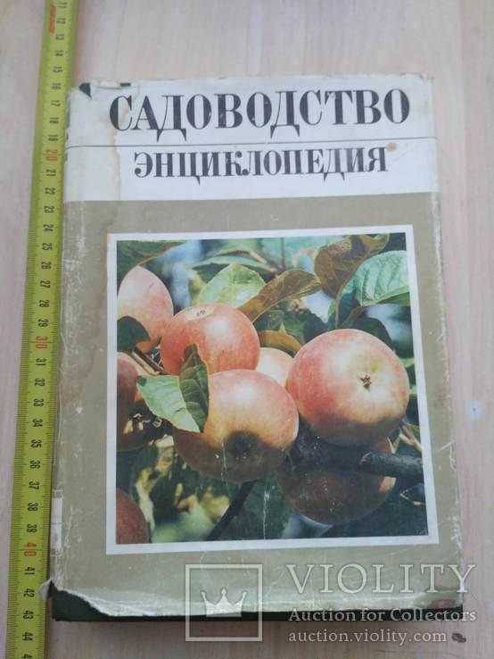 Садоводство Энциклопедия 1 том 1990р., фото №2