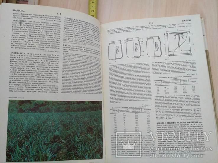Садоводство Энциклопедия 1 том 1990р., фото №10