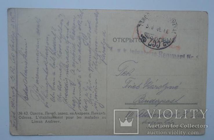Одесса 1918 г вид на лечебный з-д, фото №3
