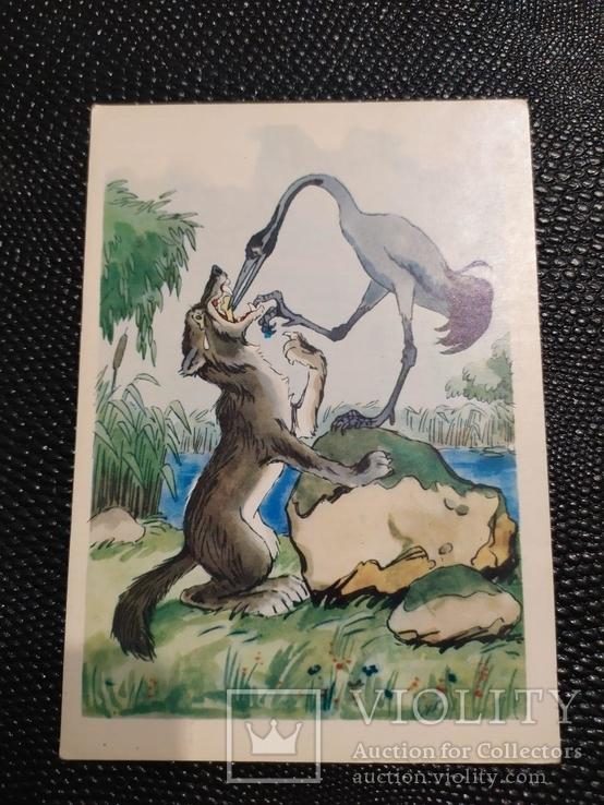 Открытка 24 волк и журавль 1967, фото №2