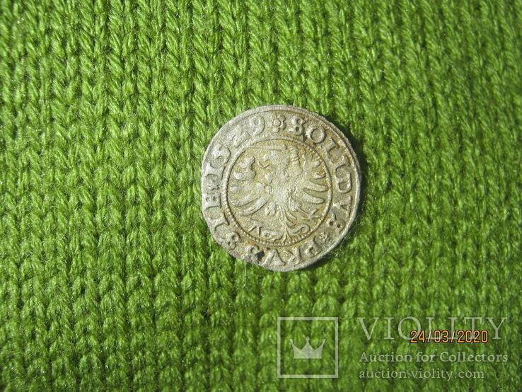Пруський солід, Сигізмунд I Старий, 1529 рік., фото №5